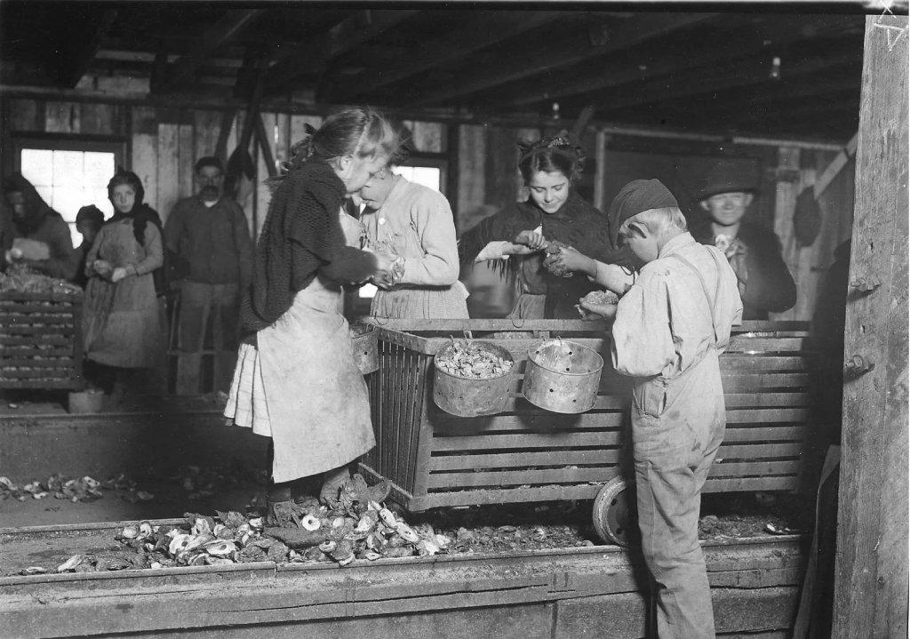 Дети работающие на устричном заводе. Алабама. 1911 г